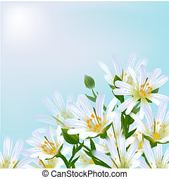 Floral background. Daisies.