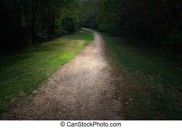 path in park, into light