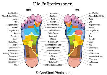 Foot reflexology chart german descr
