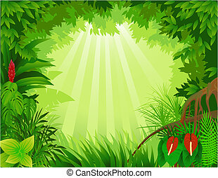 Forest background