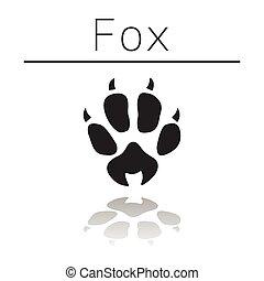 Fox animal track