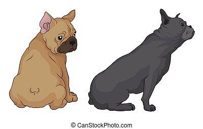 French Bulldog as Domestic Breed Sitting Vector Set