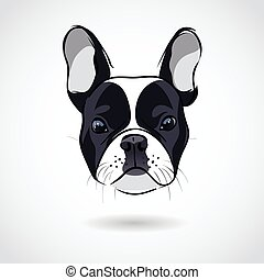French bulldog head isolated on white background