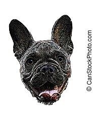 french bulldog head vector illustration