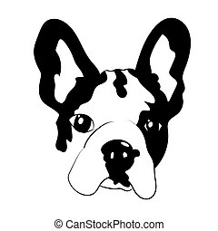 French bulldog puppy illustration