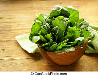 fresh green spinach organic healthy