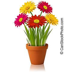 Fresh spring color flowers Vector illustration