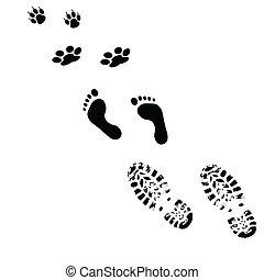 from man to animals illustration