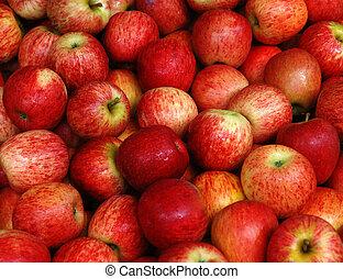 Fruit - Apple