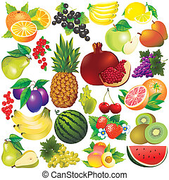 Fruits on a white background. Vector art-illustration.