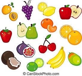 Various fruit illustrations on white background
