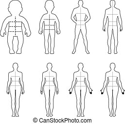 Full length front, back human outlined silhouette vector illustration with marked body's sizes lines, isolated on white
