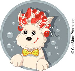 Cute puppy wearing curlers and having a bath
