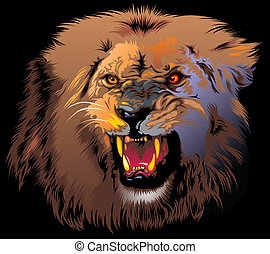 ferocious lion in the jungle on the black background