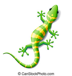 Vector illustration of a gecko. Image does not contain gradient mesh.