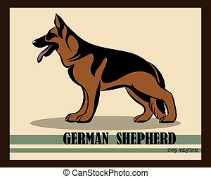 German Shepherd Dog color vector eps 10