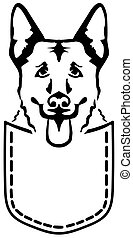 German Shepherd dog pocket