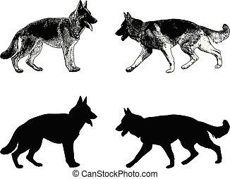 german shepherd dog silhouette and sketch