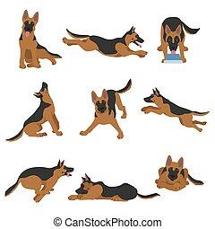 German shepherd dogs in different poses. Shepherd characters set