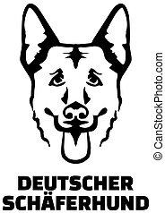 German Shepherd head german