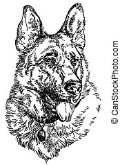 German shepherd vector hand drawing Illustration