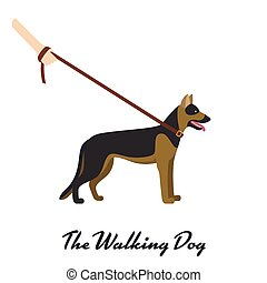 German shepherd with a leash - on white background. Vector illustration