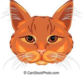 Ginger cat head isolated on white. Vector illustration