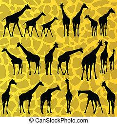 Giraffe detailed silhouettes background vector