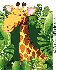 Giraffe in the woods