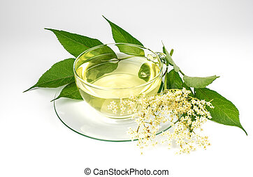 Cup with elder tea and fresh elder blossom