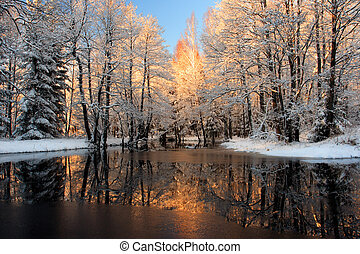 Golden sunlight reflection