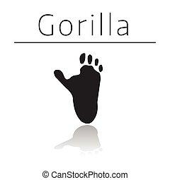 Gorilla animal track