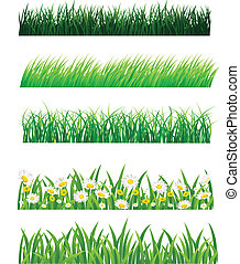 Vector illustration of grass collection