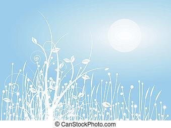 Grasses in the winter