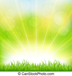 Green Background With Green Grass And Sunburst, Vector Illustration
