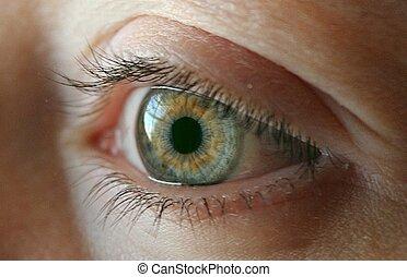 Pretty green eye