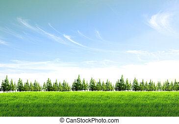 Green field blue sky background