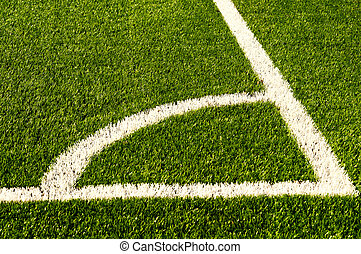 Green football field grass. Texture