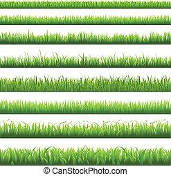 Green Grass Borderi, Vector Illustration