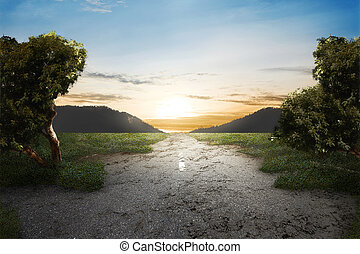 Green grass on abandoned road