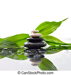 Green leaves over zen stones pyramid on waterdrops surface