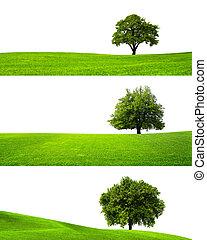 Green nature