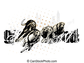 grey hound racing