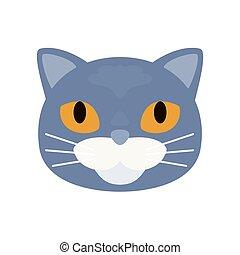 Grey short haired british cat. Vector illustration.