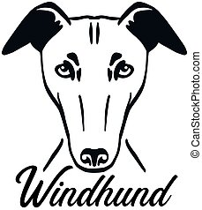 Greyhound head german
