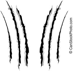 Cat claw scratches marks set on white background.