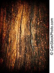 Grunge old wood texture.