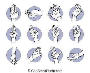 Hand fingers and palm gestures.