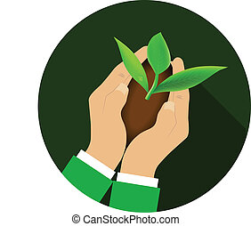 Hands holding young plant.