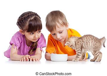 happy children girl and boy feed cat kitten